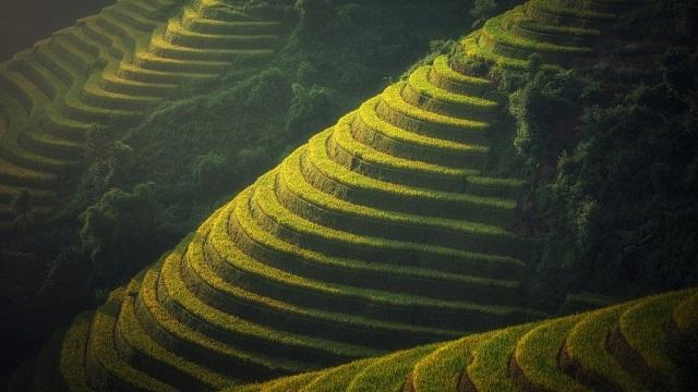 Kinh nghiệm du lịch Hà Giang nên đi khoảng từ tháng 10 - 12