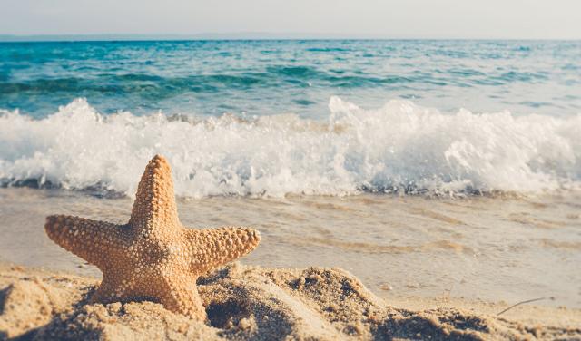 Du lịch Hàn Quốc đừng nên bỏ qua các bãi biển xinh đẹp