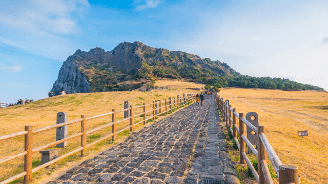 Đi theo tour du lịch Hàn Quốc để tỷ lệ đậu visa đậu cao hơn