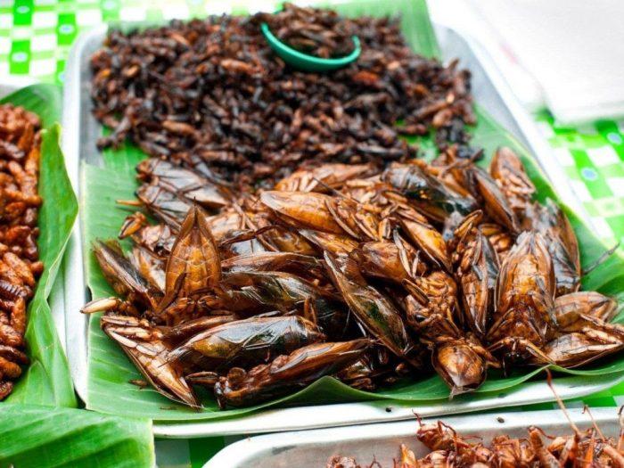 Các món ăn từ côn trùng (Ảnh: ST)